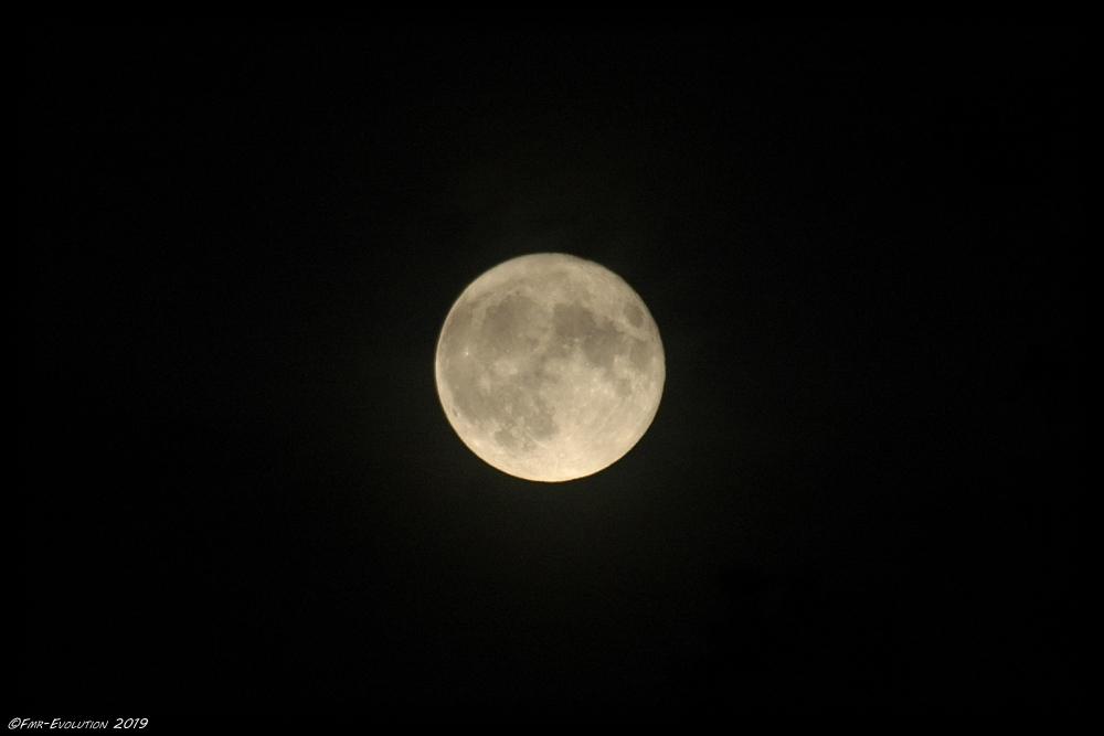 Lune - Pleine
