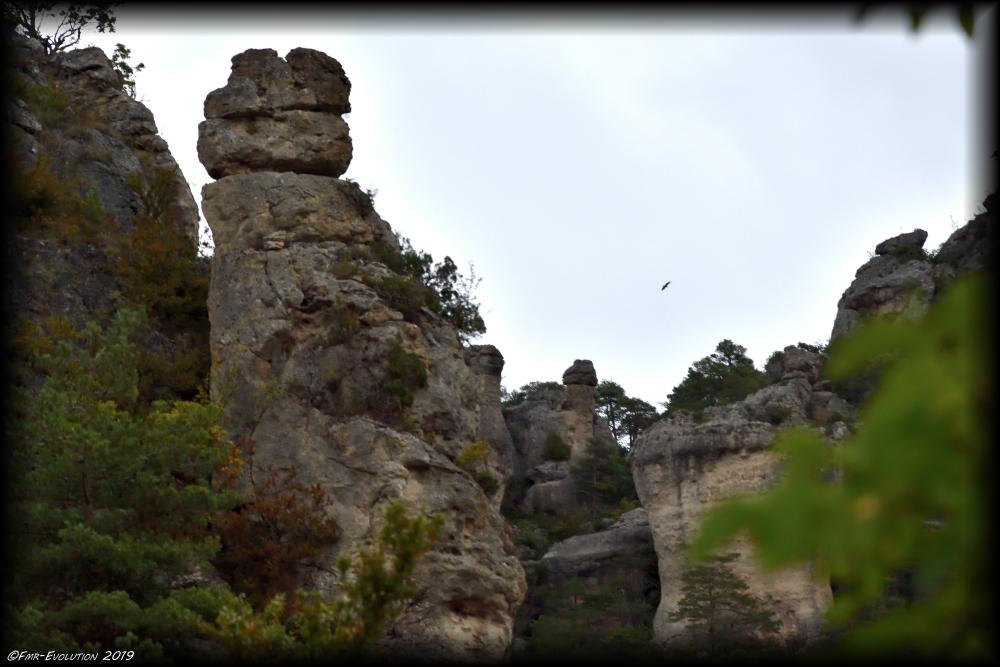 Gorges du Tarn - Vu du Capluc