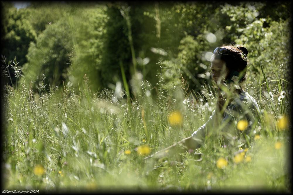 Vouneuil sous Biard -
