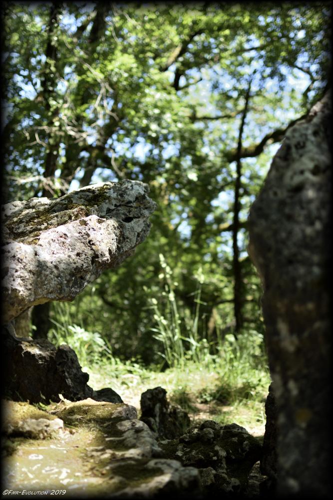 Aslonnes - Dolmen d'Arlait