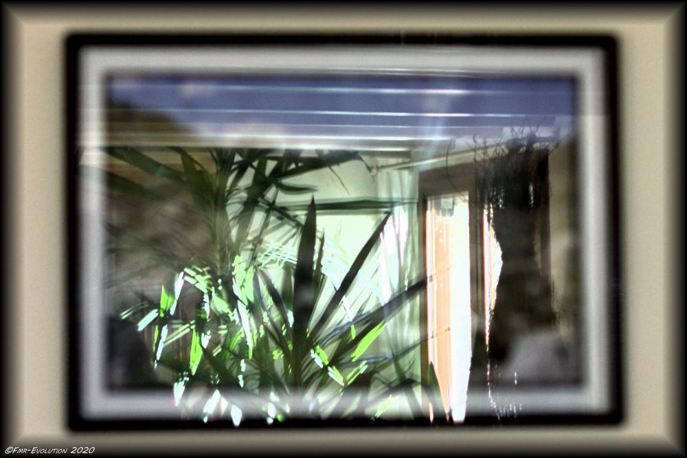 Essai - Reflet Tableau
