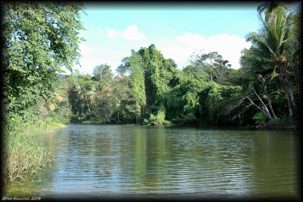 Las Cuevas - rivière ou mer