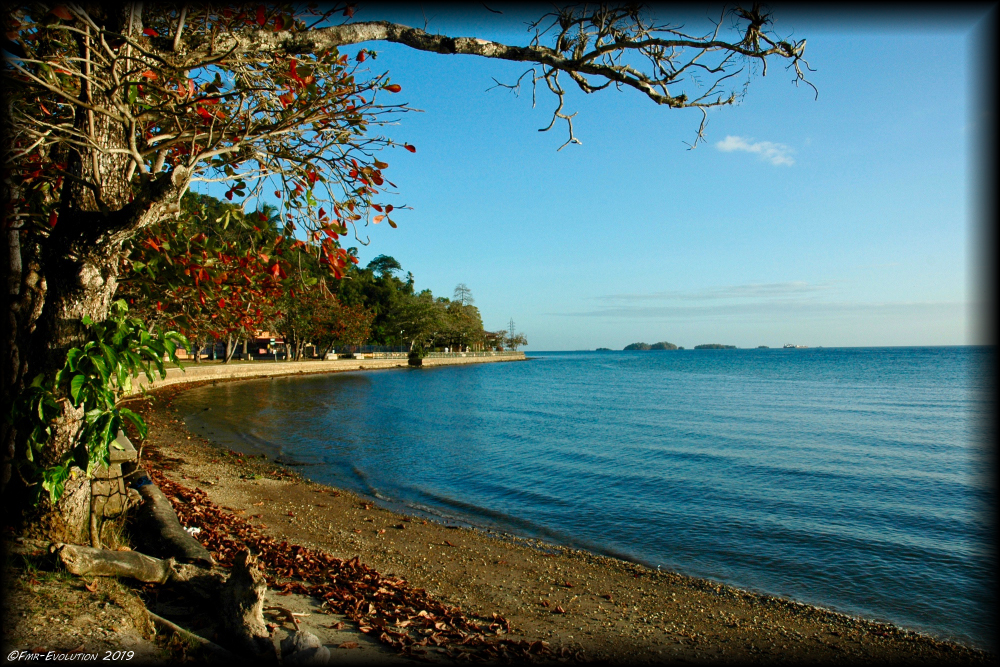Chaguaramas Natural Parc - Indian bay