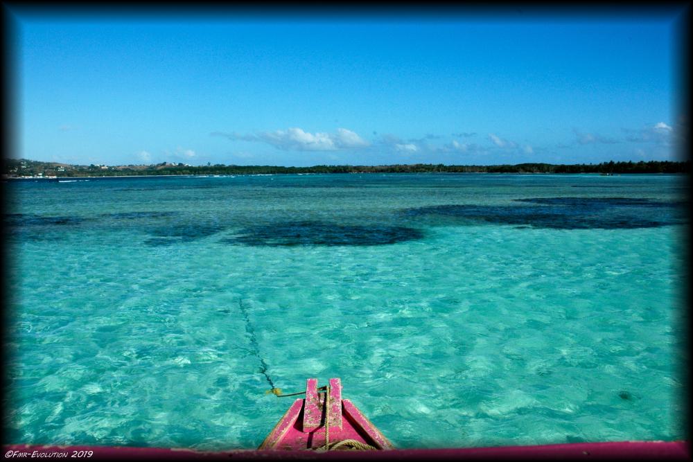 Tobago - La piscine