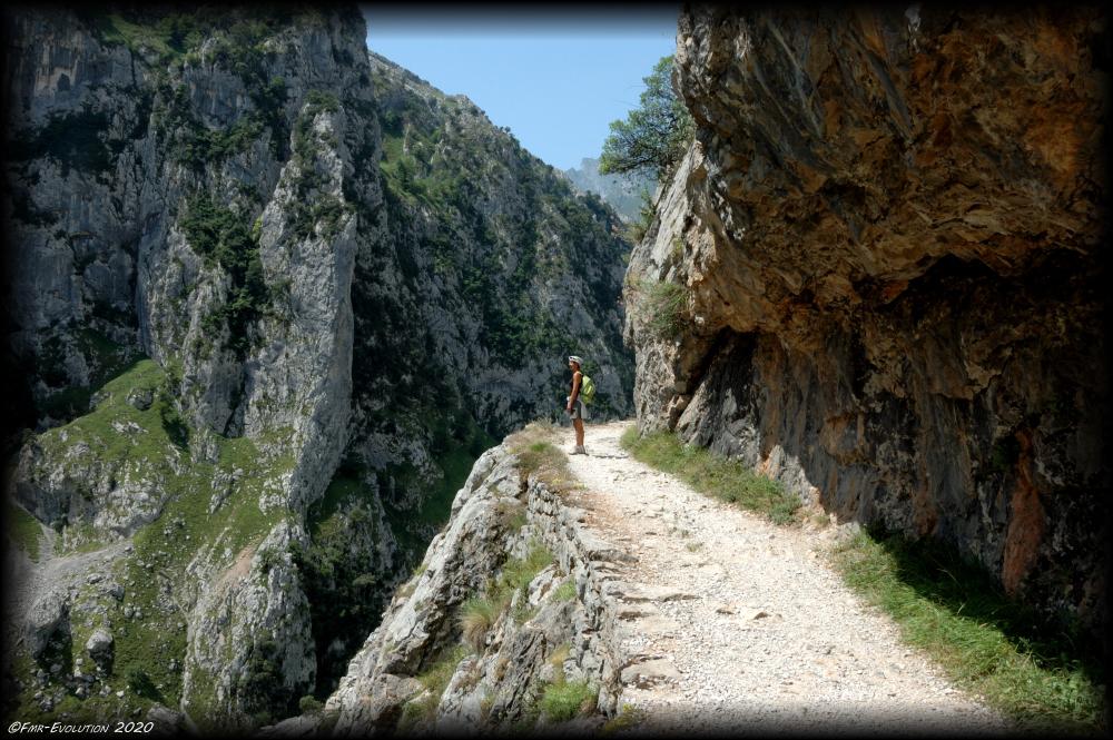 Parc National Los Picos de Europa