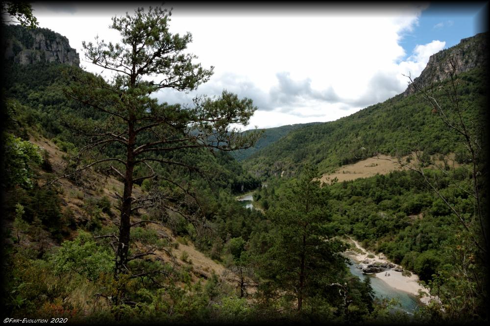 Le Tarn - vue du Causse Méjean