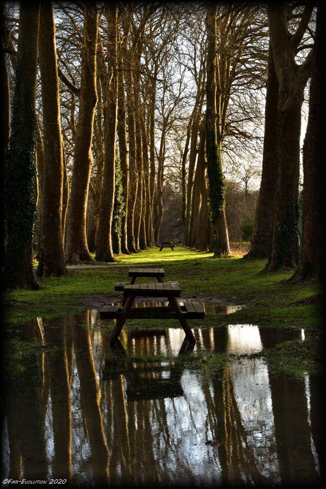 Parc de Vounant - Vivonne